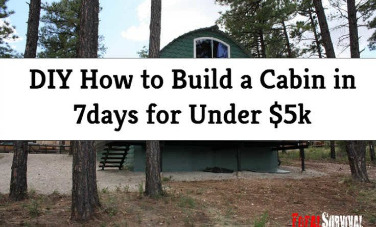 Diy how to build a cabin in 7days for under 5k for Build a cabin for under 5000