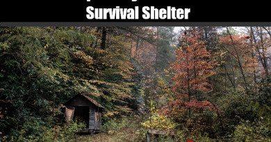 make_a_survival_shelter