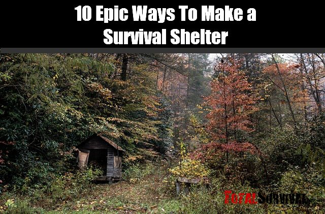 make_a_survival_shelter