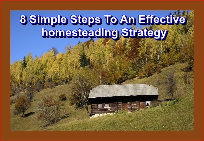 8 simple steps to an effective homesteading strategy