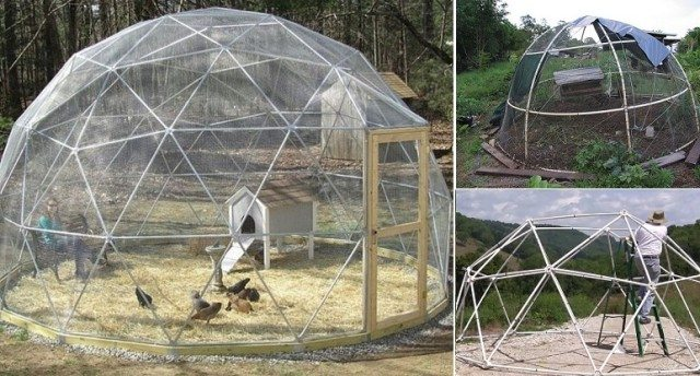 How To Build A Geodesic Chicken Dome Total Survival
