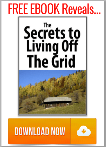 off_grid_ebook_banner_300x420_01