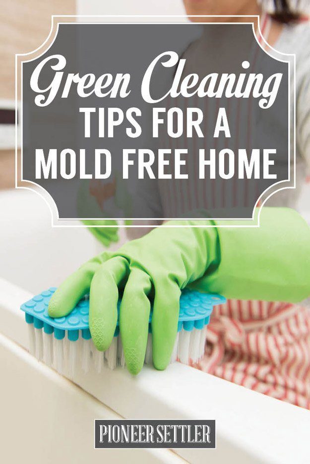 Green cleaning tips to prevent mold in house total survival - Home secrets brief cleaning guide ...