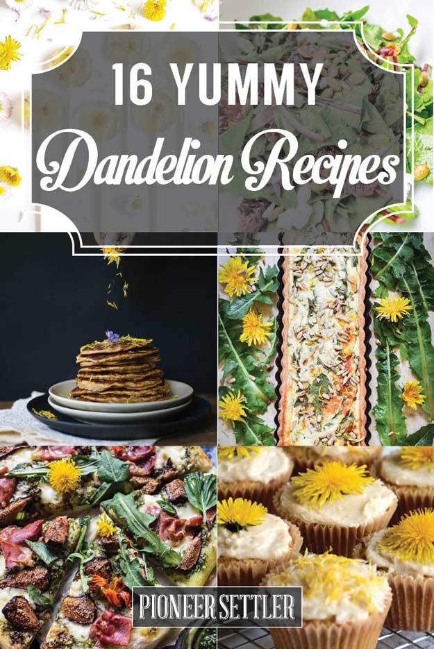 Dandelion-Recipes