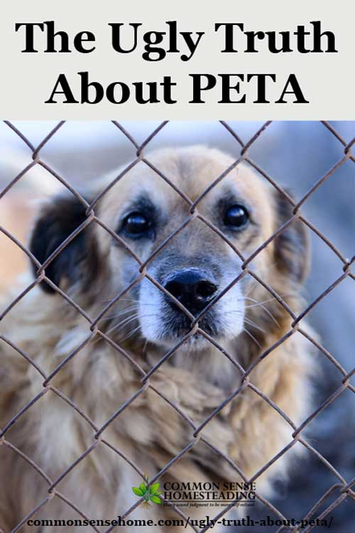 "peta research paper So has peta's ""shocking"" video convinced me to give up my canada  to world- leading research directed by the fur institute of canada with."