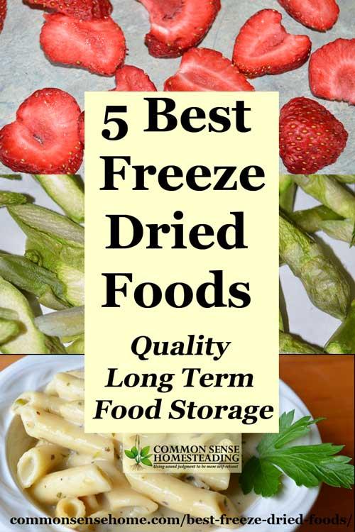 Best Tasting Freeze Dried Survival Food