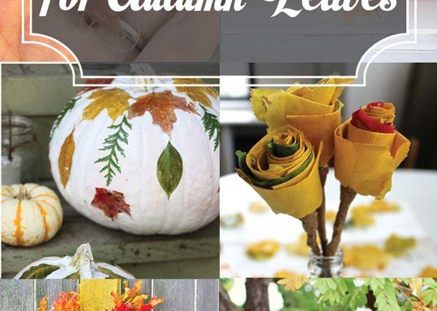 15 Diy Ideas For Autumn Leaves Total Survival