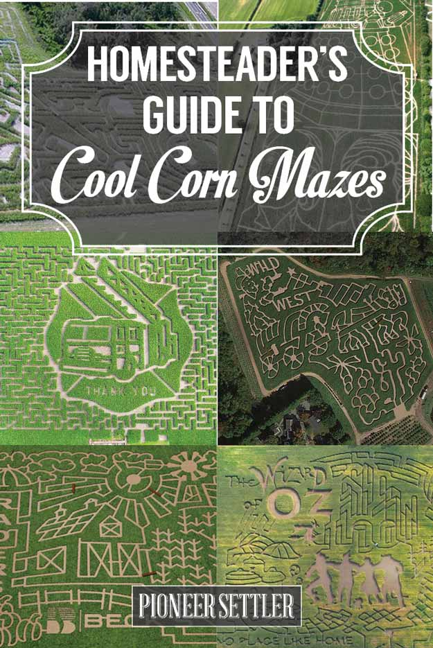 14 corn maze ideas throughout history