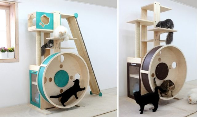 Climbing Toys For Indoor Cats Uk