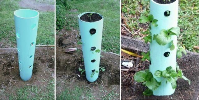 diy 17 plant vertical planter