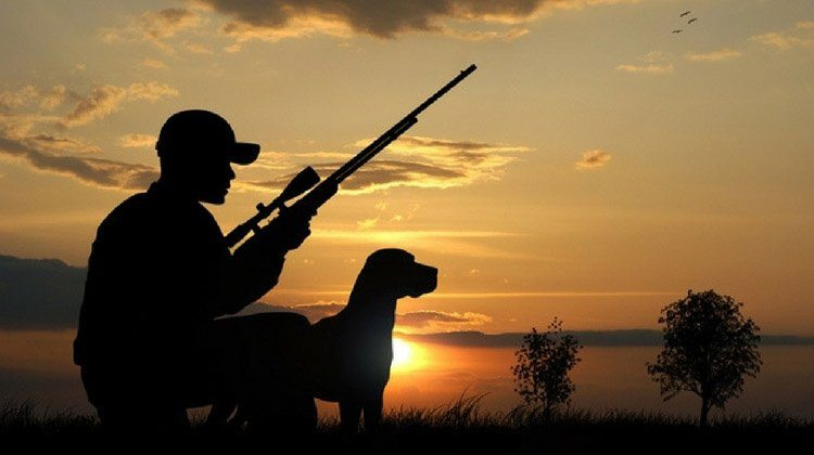 Kansas hunting laws total survival for Kansas out of state fishing license