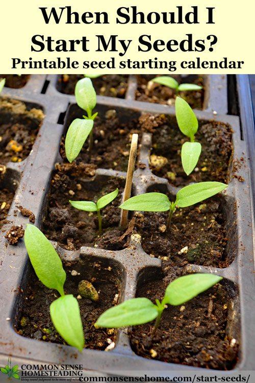 When Should I Start Seeds? Printable Seed Starting Calendar