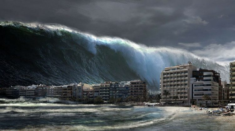 Tsunami essay 2004