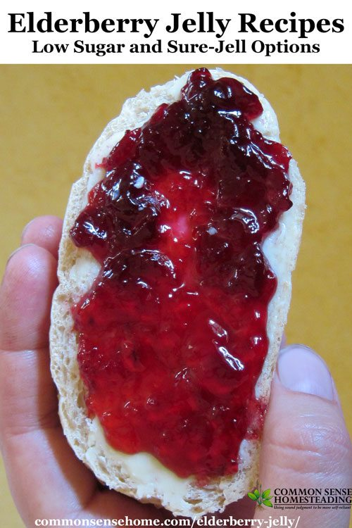 Elderberry Jelly Recipes – Low Sugar and Sure-Jell Options ...