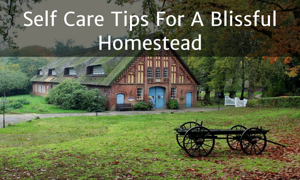 Self Care Tips For A Blissful Homestead bp 2