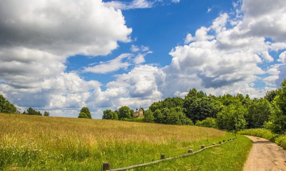 Free land for homesteading 1 total survival for Where to buy cheap land for homesteading