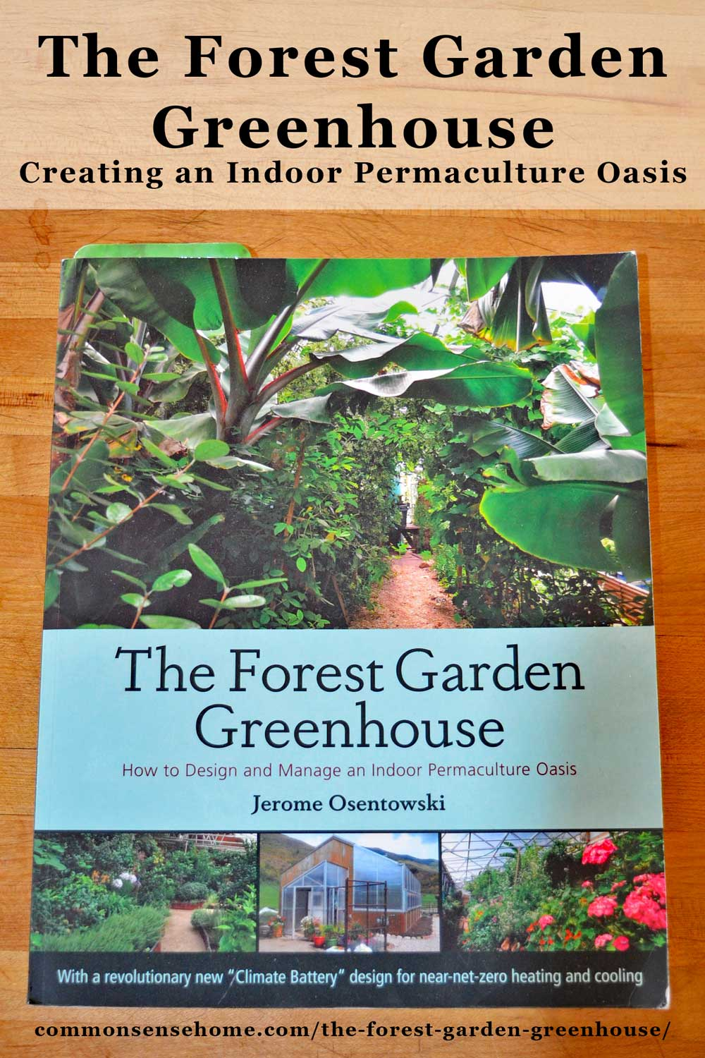 The Forest Garden Greenhouse: Creating an Indoor ...