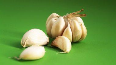 garlic-1549454_640