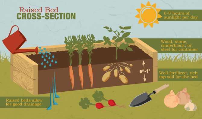 By Opting For A Raised Bed, You Will Build These Above The Surface Of The  Soil And You Can Add Extra, Better Quality Soil To Your Construction.