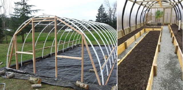 10 Cheap Easy Diy Greenhouse Projects Total Survival