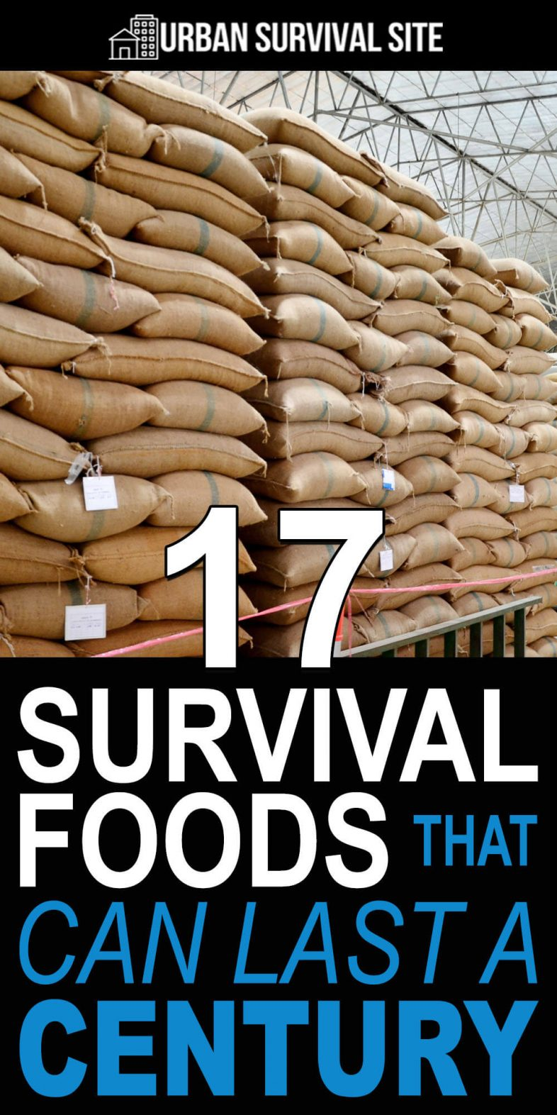 17-survival-foods-that-can-last-a-century-pin-1