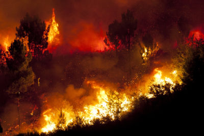 forest-fire-california-blackouts-400x267