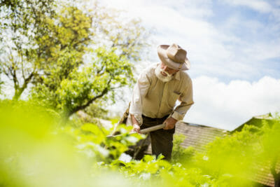 graphicstock-old-farmer-with-a-hoe-weeding-in-the-garden_HCcqQOhZZ-400x267