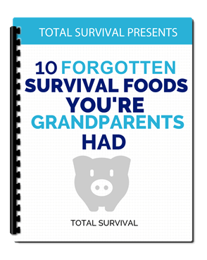 10 forgotten survival foods